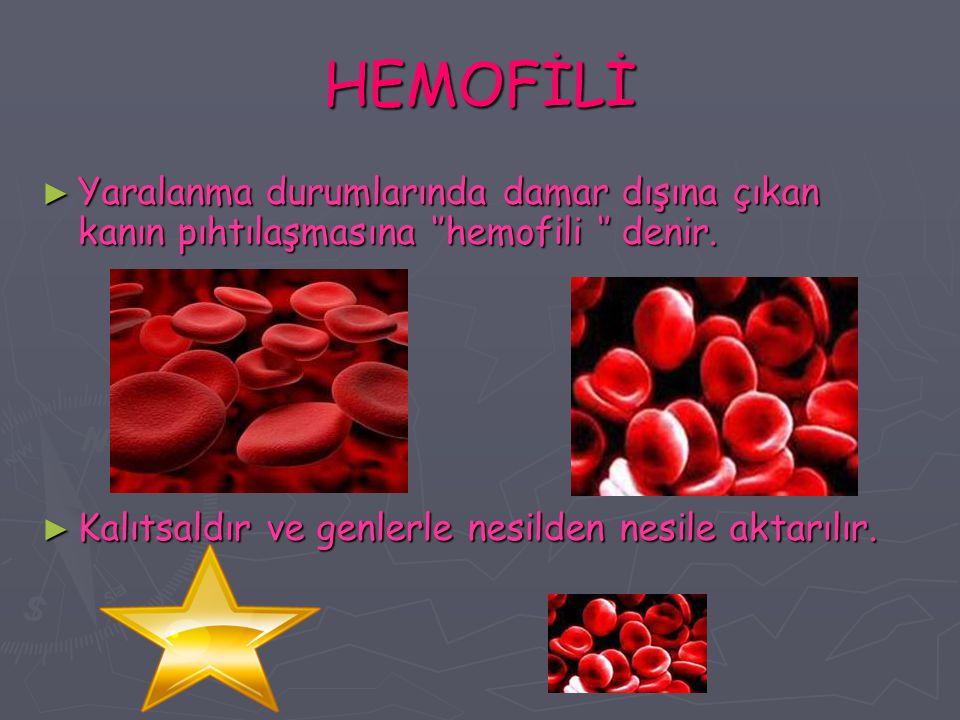 HEMOFİLİ Yaralanma durumlarında damar dışına çıkan kanın pıhtılaşmasına ''hemofili '' denir.