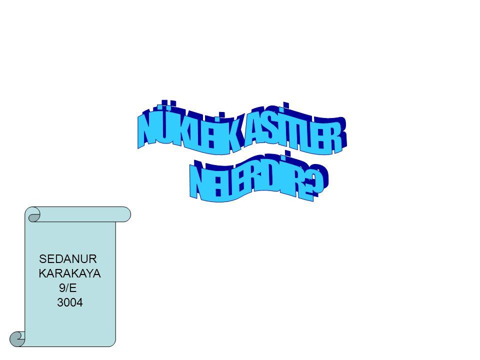 NÜKLEİK ASİTLER NELERDİR SEDANUR KARAKAYA 9/E 3004