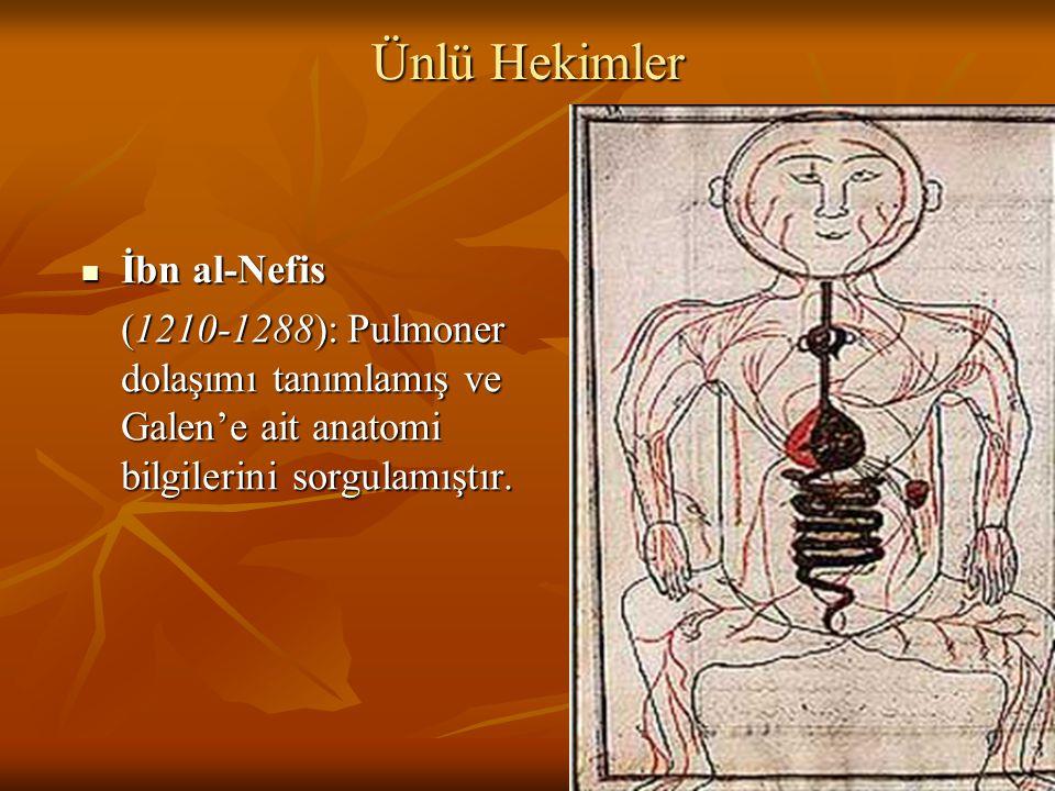 Ünlü Hekimler İbn al-Nefis