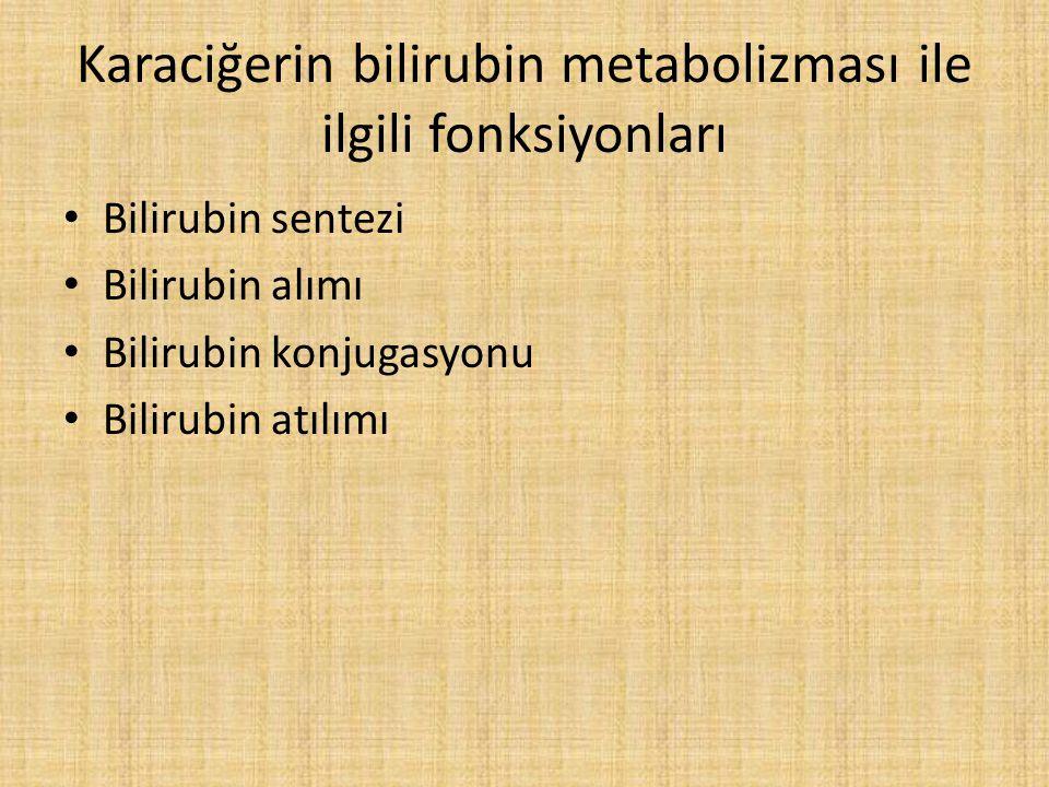 Karaciğerin bilirubin metabolizması ile ilgili fonksiyonları