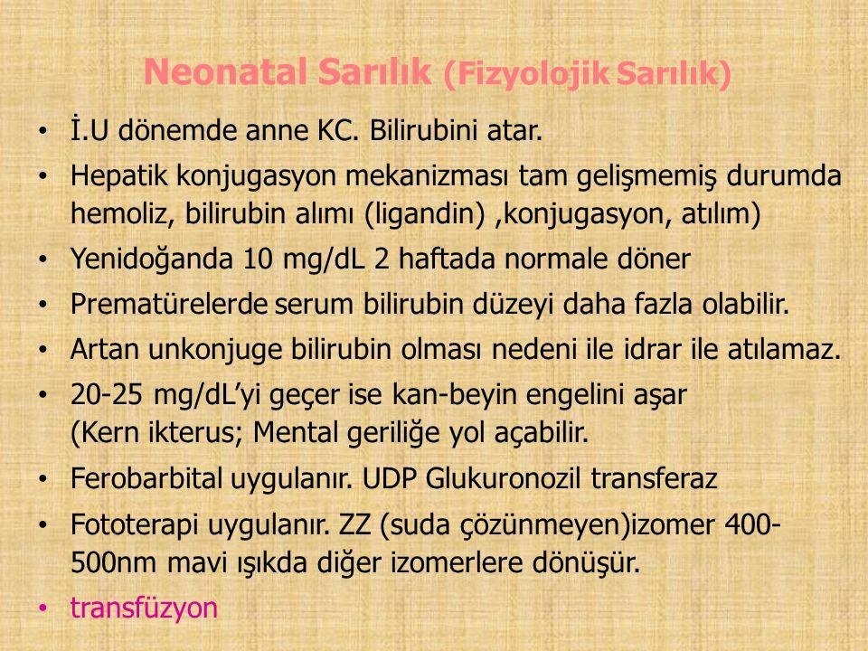 Neonatal Sarılık (Fizyolojik Sarılık)
