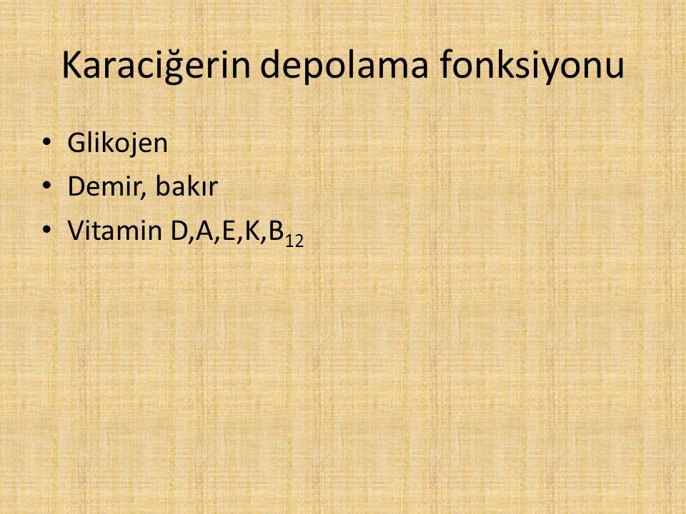 Karaciğerin depolama fonksiyonu
