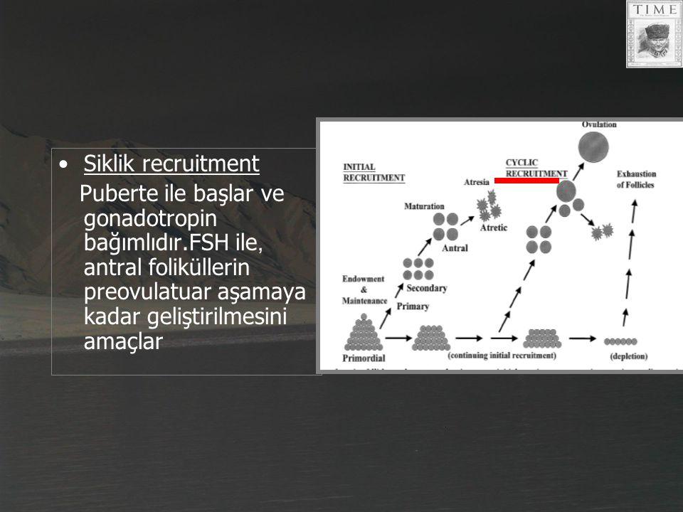 Siklik recruitment Puberte ile başlar ve gonadotropin bağımlıdır.FSH ile, antral foliküllerin preovulatuar aşamaya kadar geliştirilmesini amaçlar.