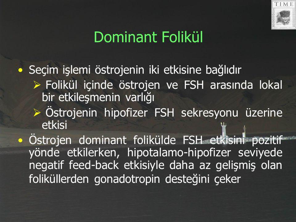 Dominant Folikül Seçim işlemi östrojenin iki etkisine bağlıdır
