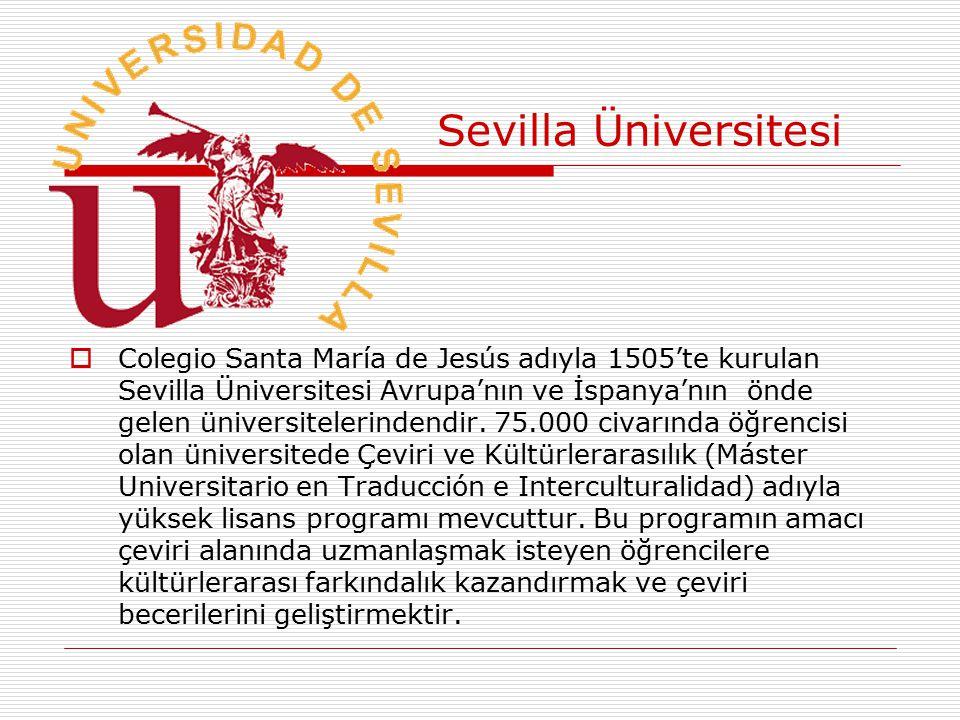 Sevilla Üniversitesi