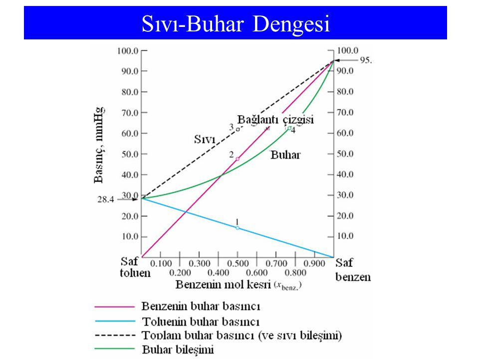 Sıvı-Buhar Dengesi The vapor phase is richer in the more volatile component.