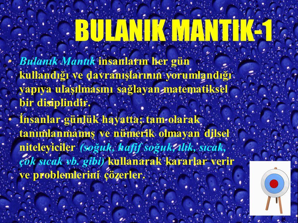 BULANIK MANTIK-1