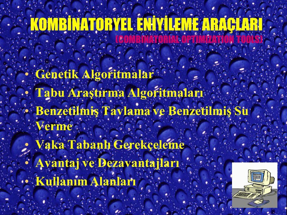 KOMBİNATORYEL ENİYİLEME ARAÇLARI (COMBINATORIAL OPTIMIZATION TOOLS)
