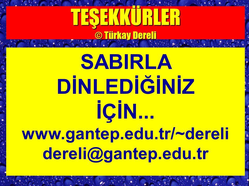 TEŞEKKÜRLER © Türkay Dereli