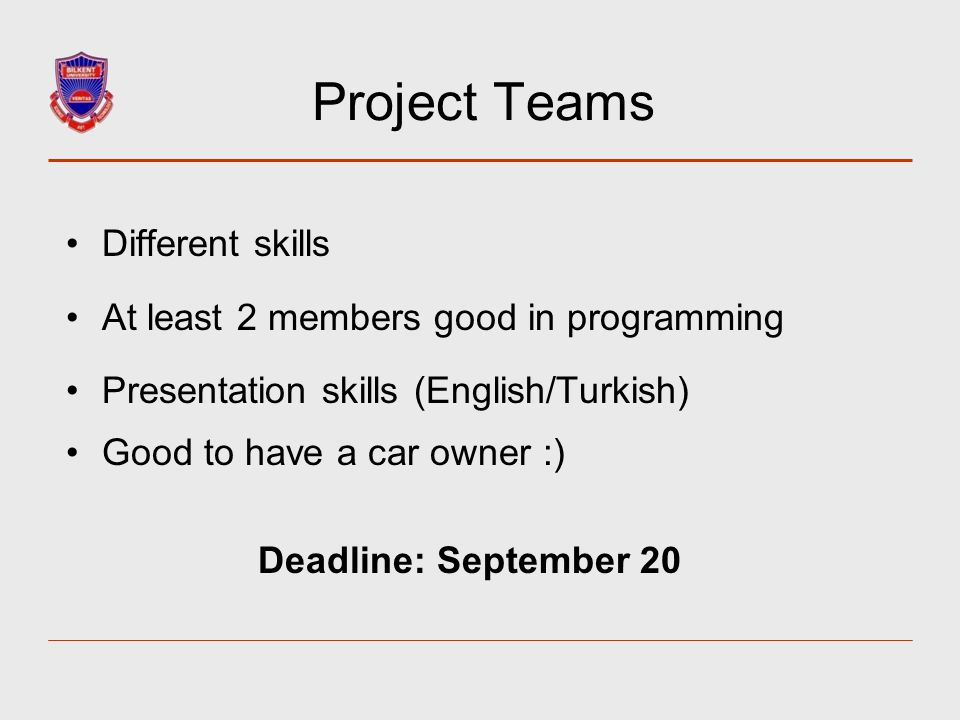 Project Teams Different skills At least 2 members good in programming