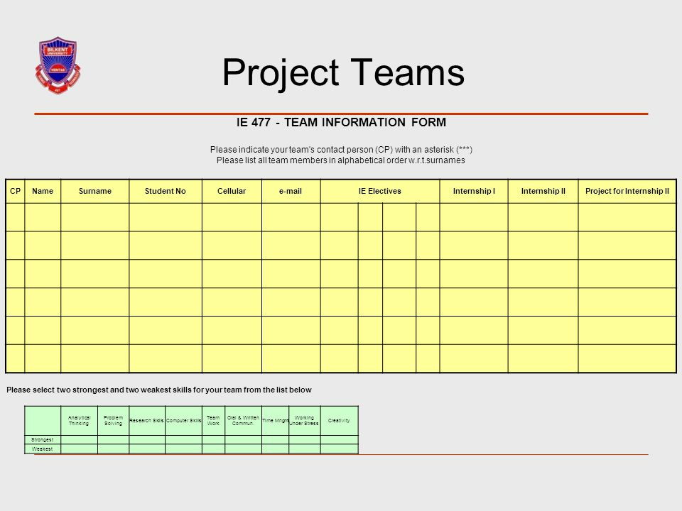 IE 477 - TEAM INFORMATION FORM Project for Internship II