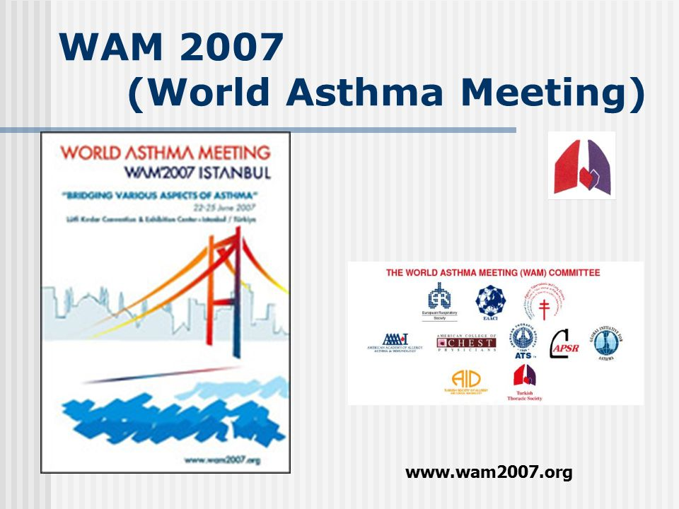 WAM 2007 (World Asthma Meeting)