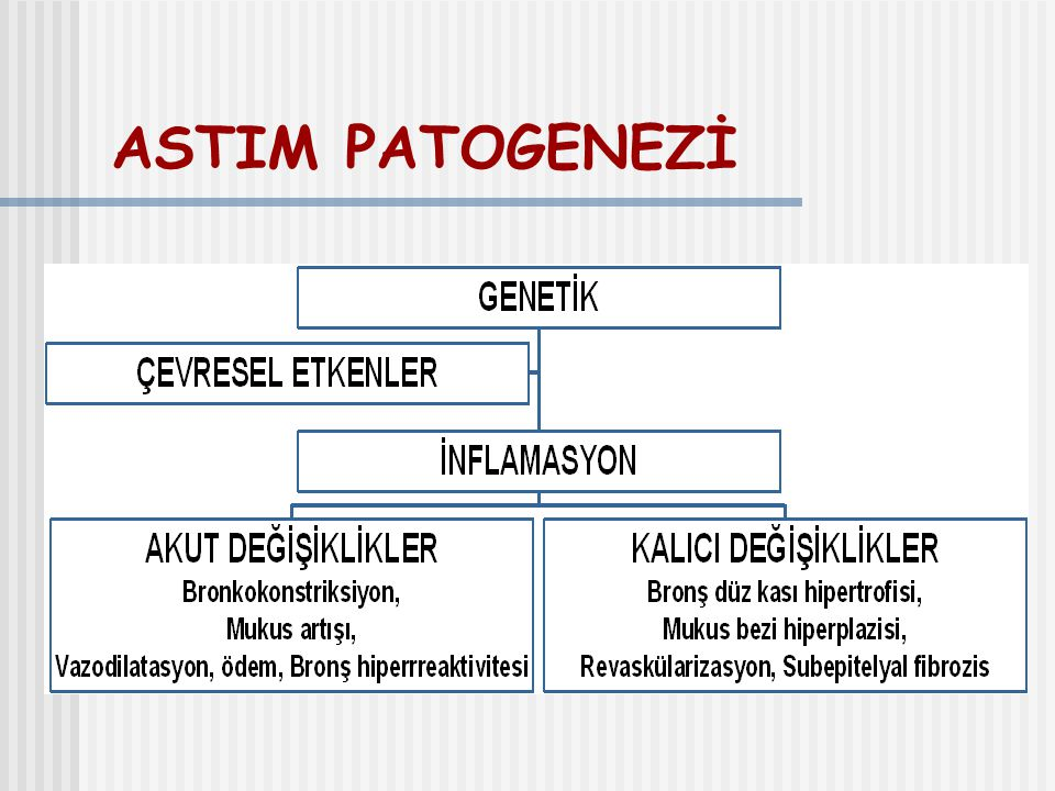 ASTIM PATOGENEZİ