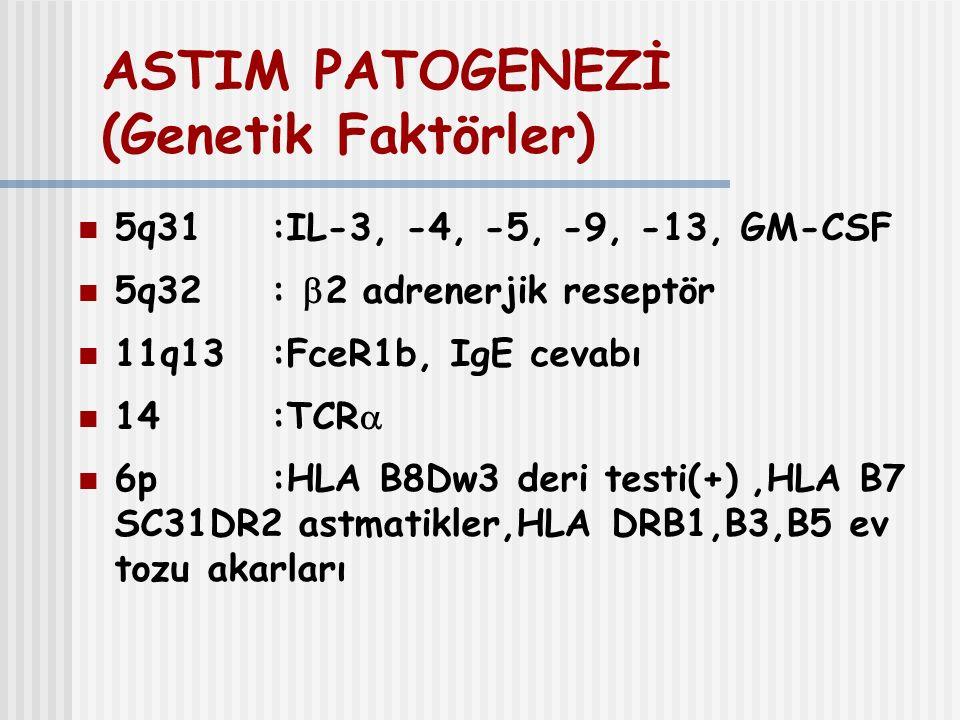 ASTIM PATOGENEZİ (Genetik Faktörler)