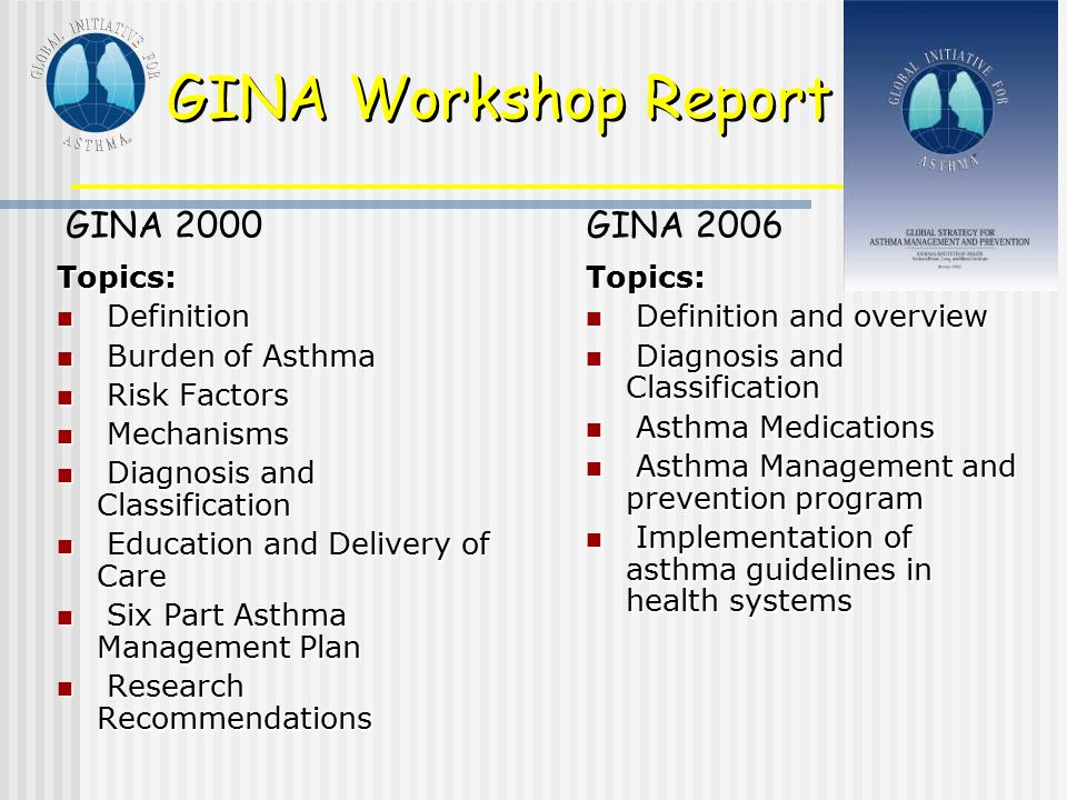GINA Workshop Report GINA 2000 GINA 2006 Topics: Definition