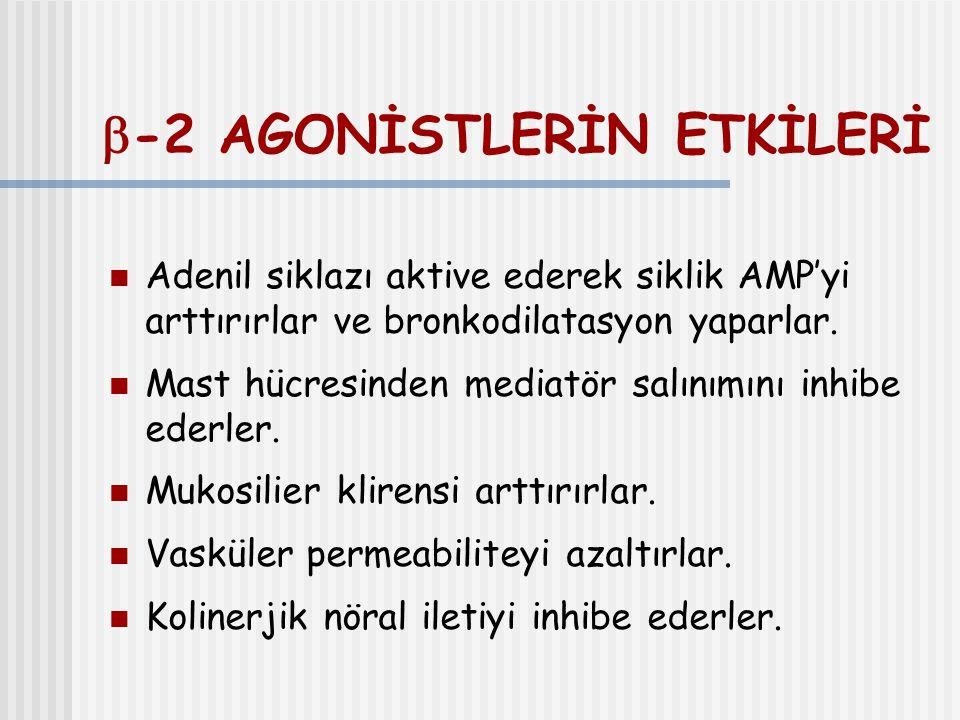 -2 AGONİSTLERİN ETKİLERİ