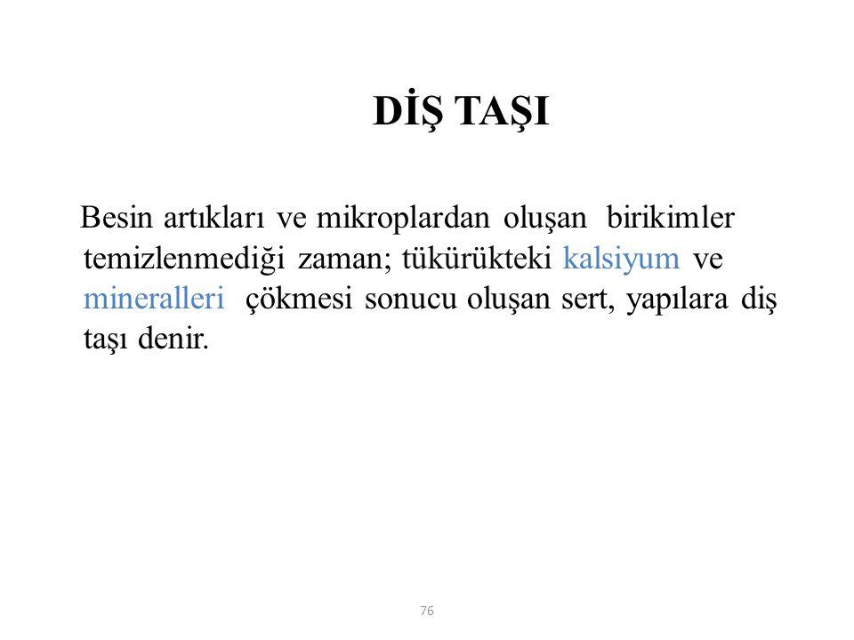 DİŞ TAŞI