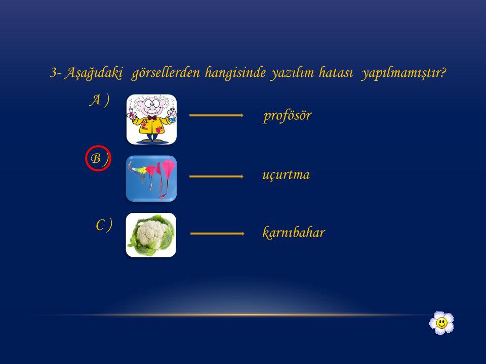 3- Aşağıdaki görsellerden hangisinde yazılım hatası yapılmamıştır
