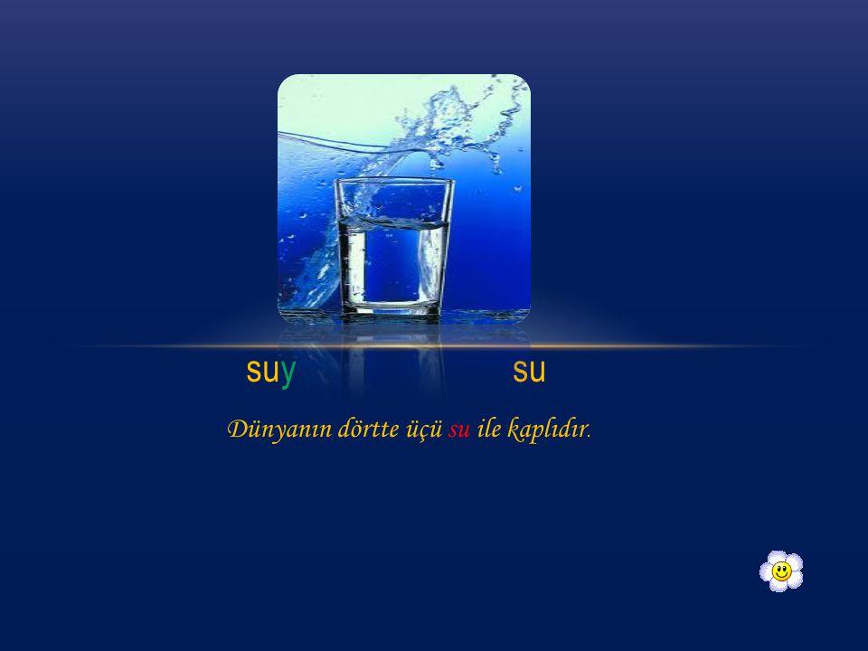 suy su Dünyanın dörtte üçü su ile kaplıdır.