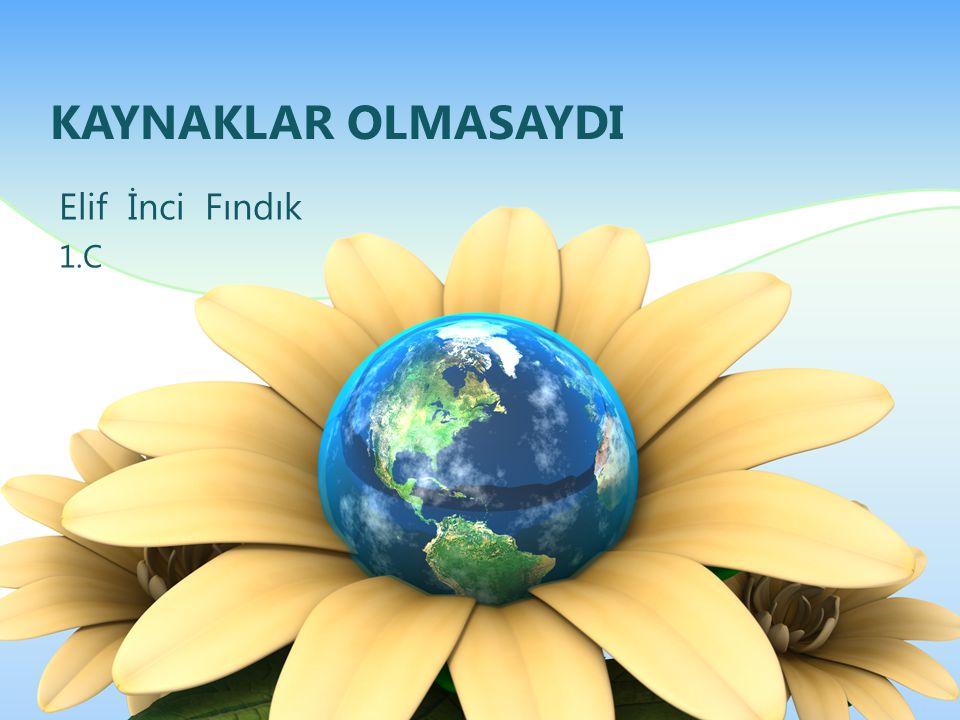 KAYNAKLAR OLMASAYDI Elif İnci Fındık 1.C