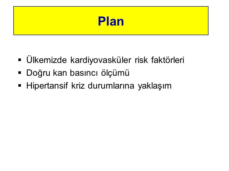 Plan Ülkemizde kardiyovasküler risk faktörleri