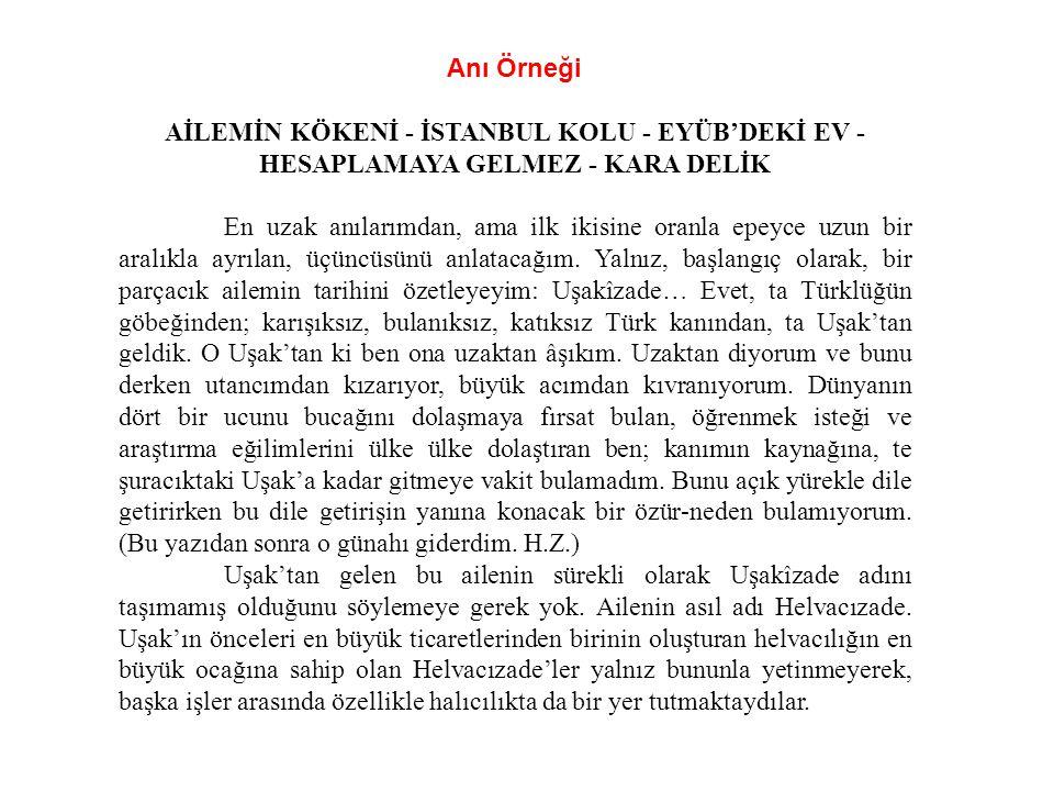 Anı Örneği Aİlemİn Kökenİ - İstanbul Kolu - Eyüb'dekİ Ev - Hesaplamaya Gelmez - Kara Delİk.