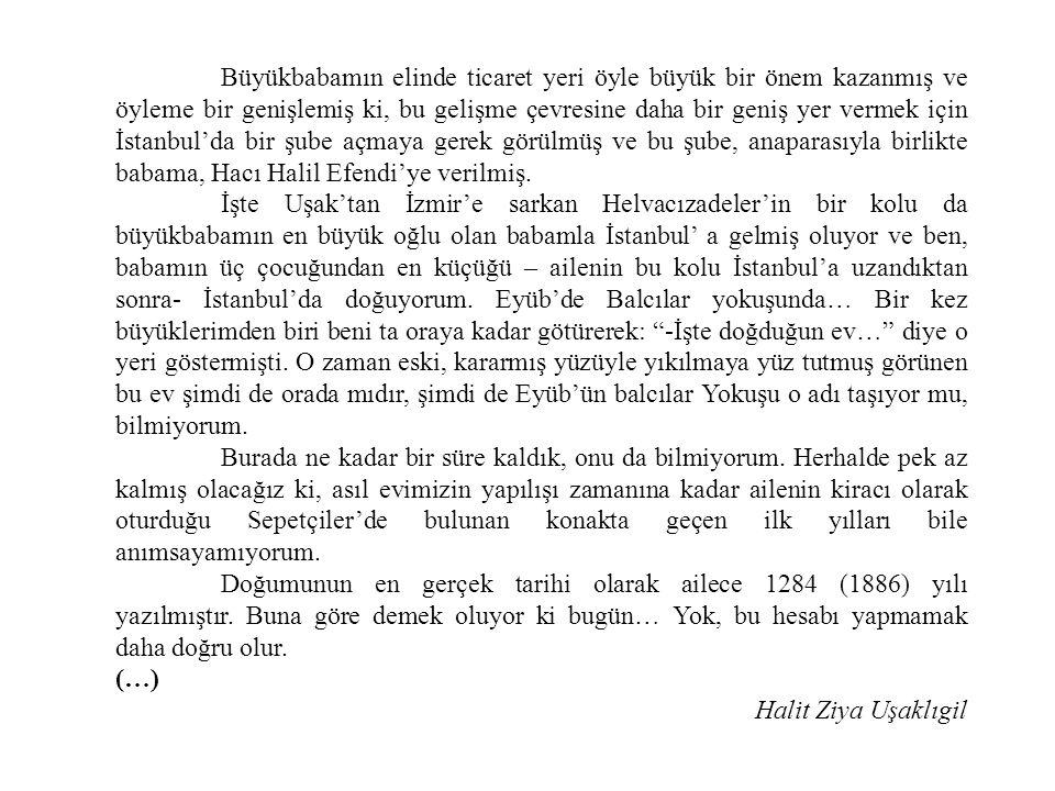 Büyükbabamın elinde ticaret yeri öyle büyük bir önem kazanmış ve öyleme bir genişlemiş ki, bu gelişme çevresine daha bir geniş yer vermek için İstanbul'da bir şube açmaya gerek görülmüş ve bu şube, anaparasıyla birlikte babama, Hacı Halil Efendi'ye verilmiş.