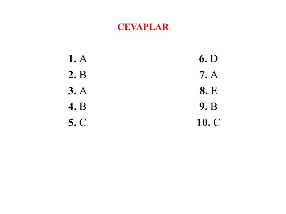 CEVAPLAR 1. A 2. B 3. A 4. B 5. C 6. D 7. A 8. E 9. B 10. C