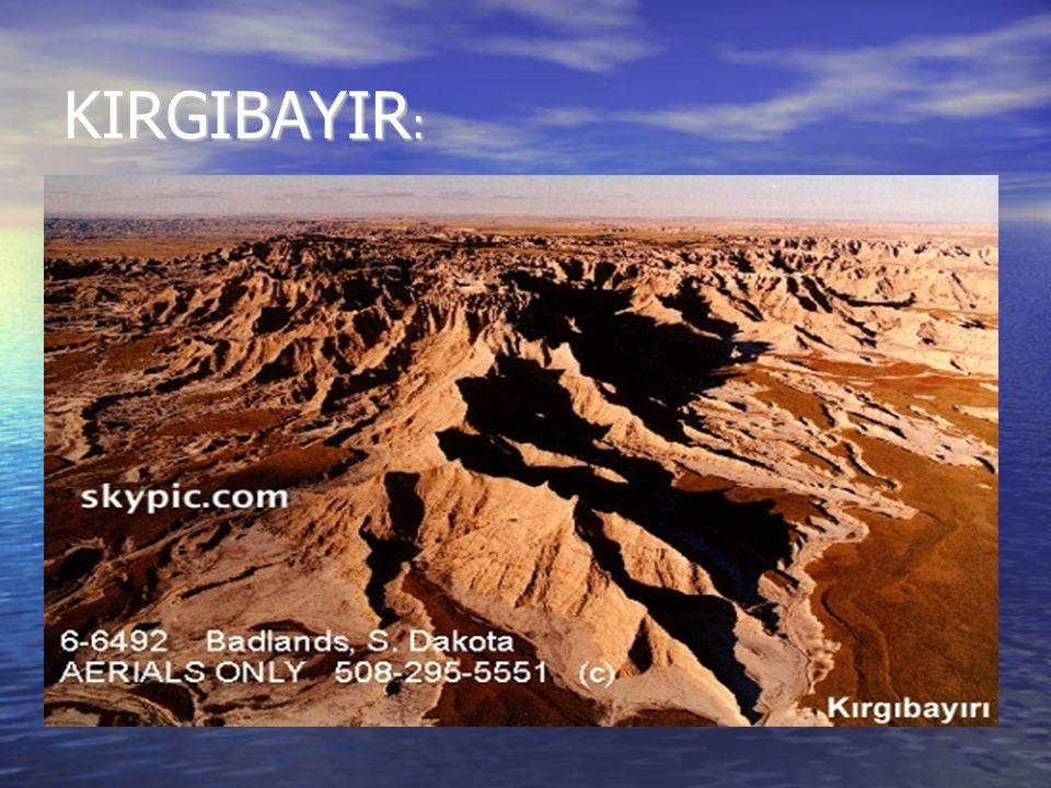 KIRGIBAYIR:
