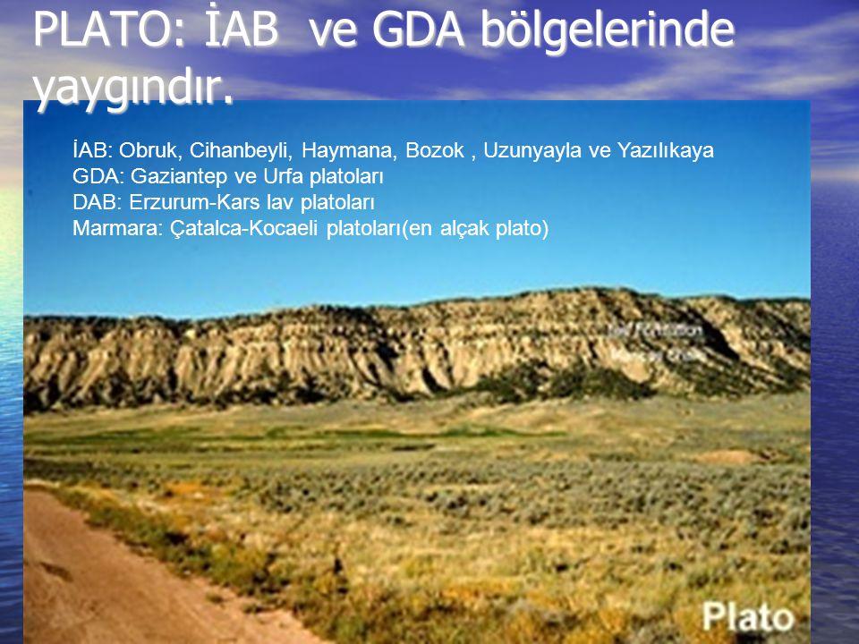 PLATO: İAB ve GDA bölgelerinde yaygındır.