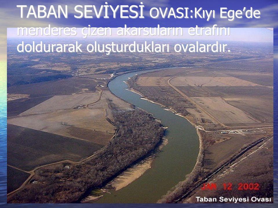 TABAN SEVİYESİ OVASI:Kıyı Ege'de menderes çizen akarsuların etrafını doldurarak oluşturdukları ovalardır.