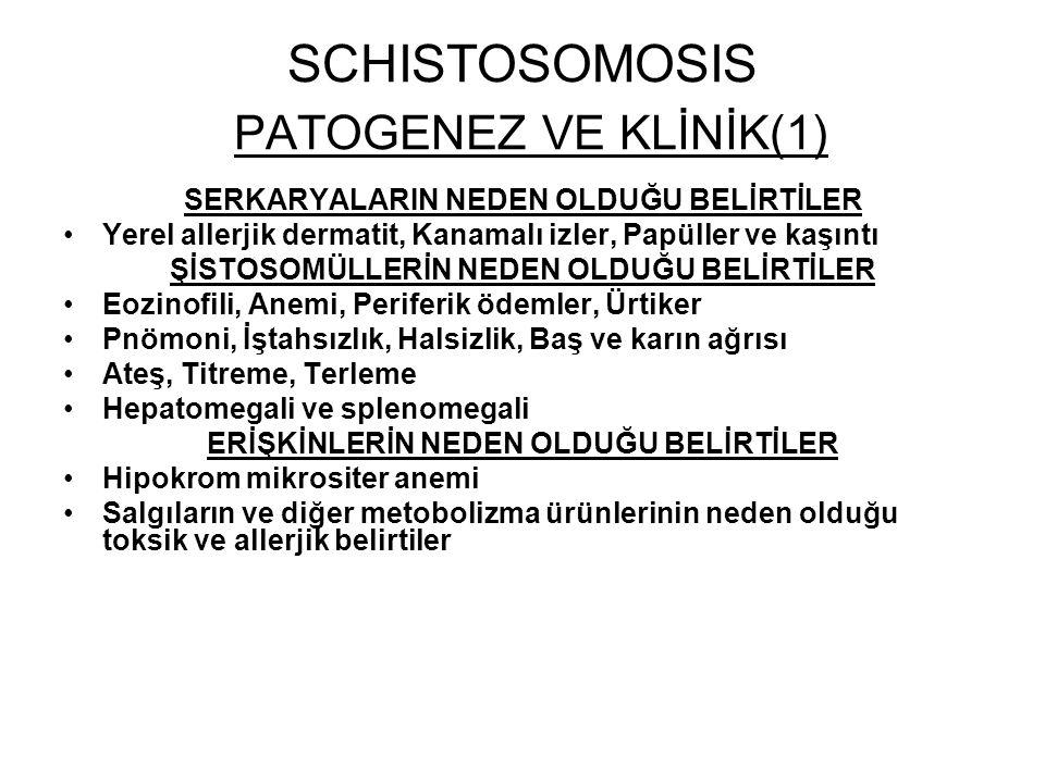 SCHISTOSOMOSIS PATOGENEZ VE KLİNİK(1)