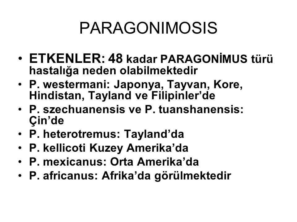 PARAGONIMOSIS ETKENLER: 48 kadar PARAGONİMUS türü hastalığa neden olabilmektedir.