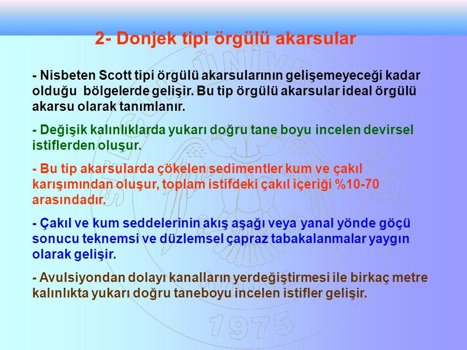 2- Donjek tipi örgülü akarsular