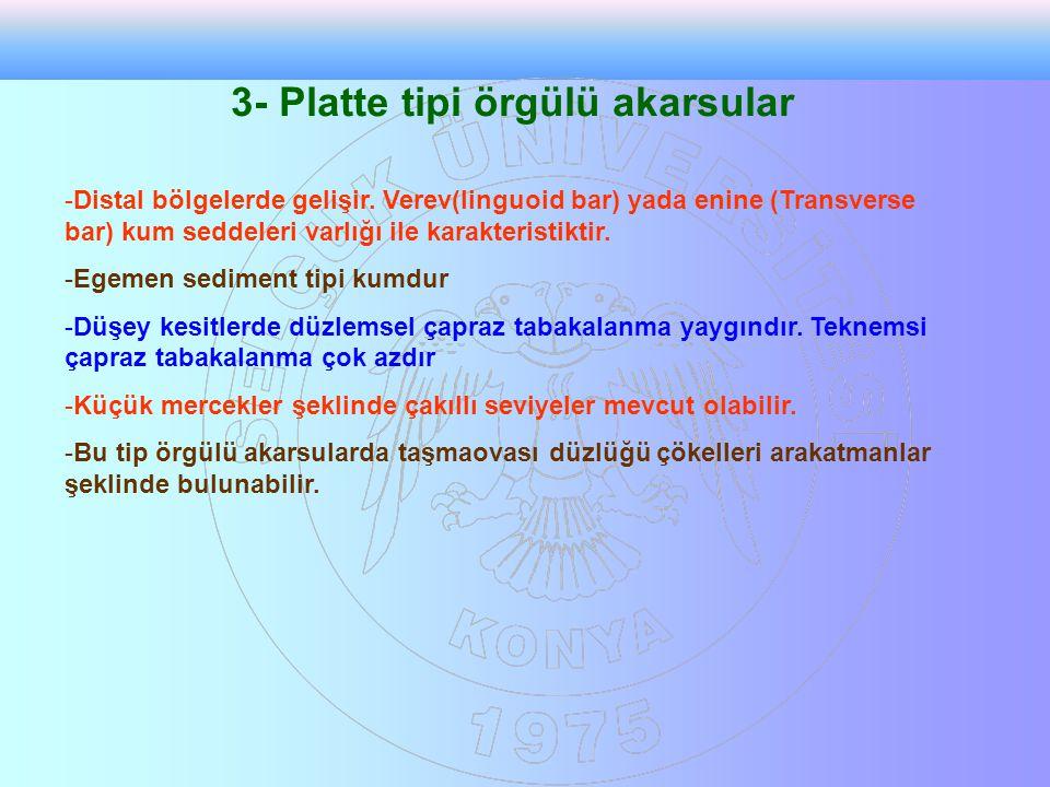 3- Platte tipi örgülü akarsular