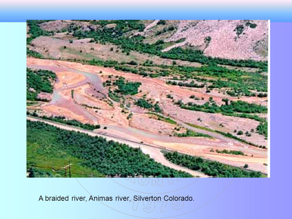 A braided river, Animas river, Silverton Colorado.