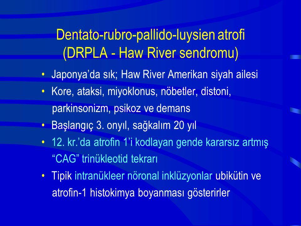 Dentato-rubro-pallido-luysien atrofi (DRPLA - Haw River sendromu)