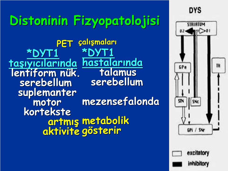 Distoninin Fizyopatolojisi suplemanter motor kortekste