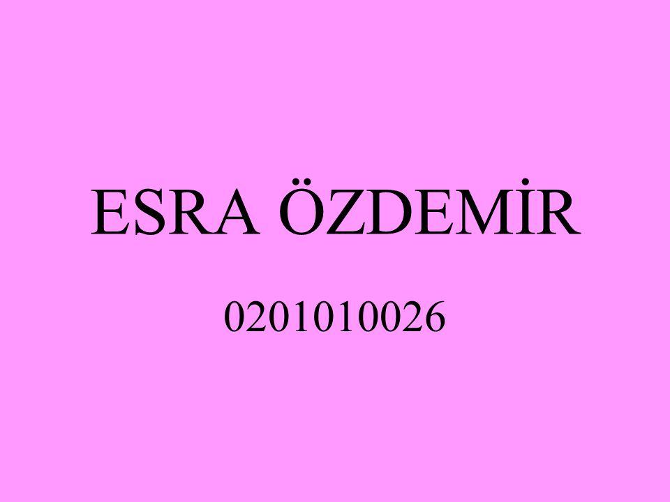 ESRA ÖZDEMİR 0201010026