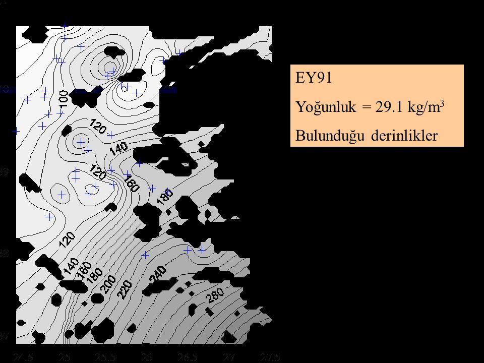 EY91 Yoğunluk = 29.1 kg/m3 Bulunduğu derinlikler