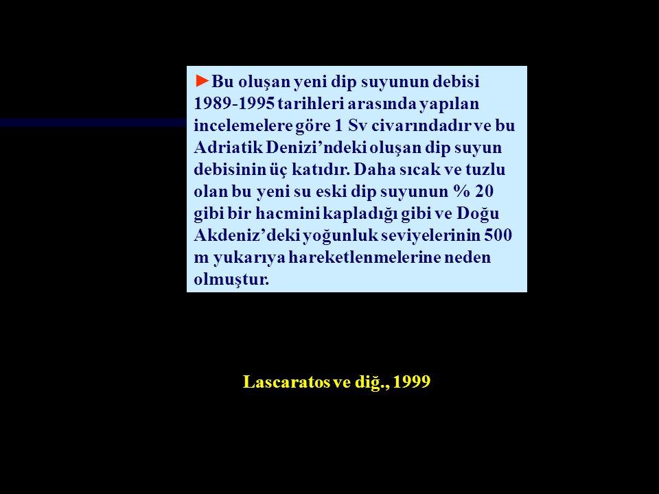 Bu oluşan yeni dip suyunun debisi 1989-1995 tarihleri arasında yapılan incelemelere göre 1 Sv civarındadır ve bu Adriatik Denizi'ndeki oluşan dip suyun debisinin üç katıdır. Daha sıcak ve tuzlu olan bu yeni su eski dip suyunun % 20 gibi bir hacmini kapladığı gibi ve Doğu Akdeniz'deki yoğunluk seviyelerinin 500 m yukarıya hareketlenmelerine neden olmuştur.