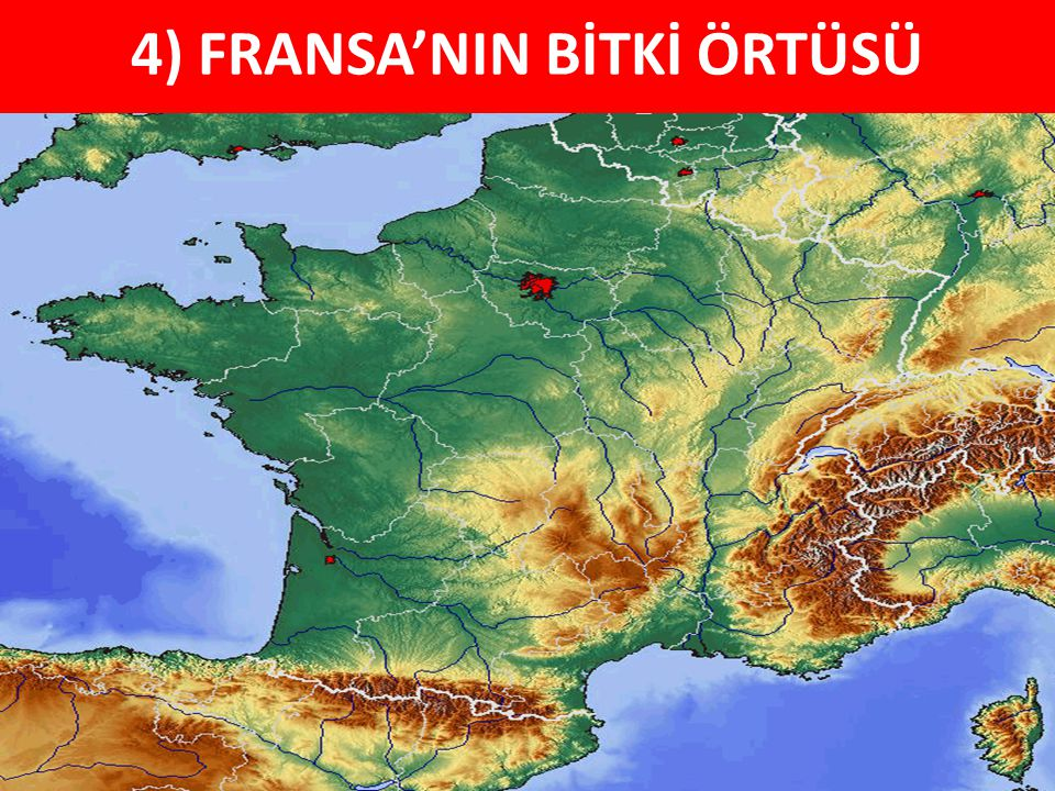 4) FRANSA'NIN BİTKİ ÖRTÜSÜ