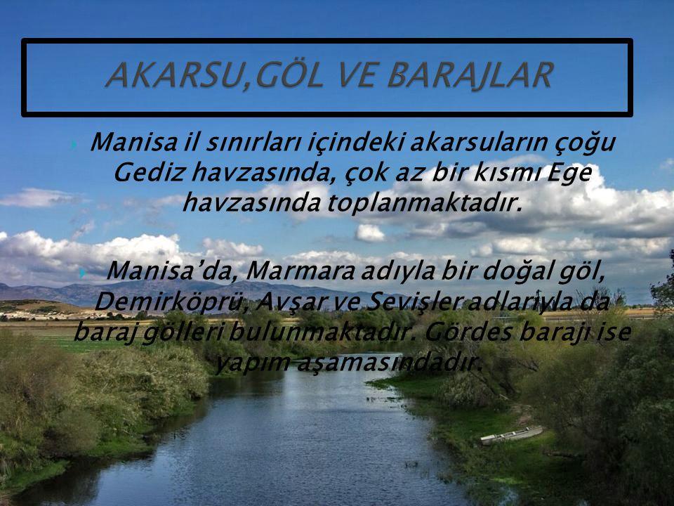 AKARSU,GÖL VE BARAJLAR Manisa il sınırları içindeki akarsuların çoğu Gediz havzasında, çok az bir kısmı Ege havzasında toplanmaktadır.