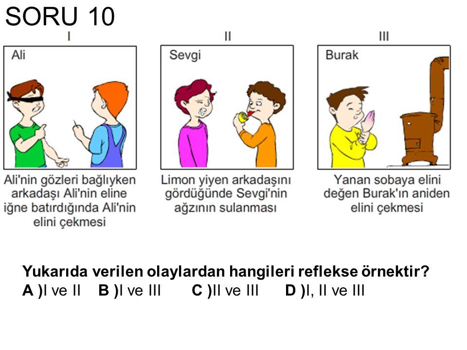 SORU 10 Yukarıda verilen olaylardan hangileri reflekse örnektir.