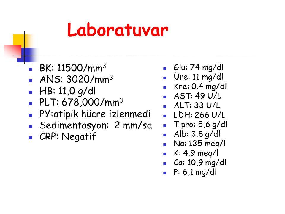 Laboratuvar BK: 11500/mm3 ANS: 3020/mm3 HB: 11,0 g/dl PLT: 678,000/mm3