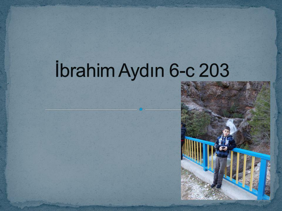 İbrahim Aydın 6-c 203