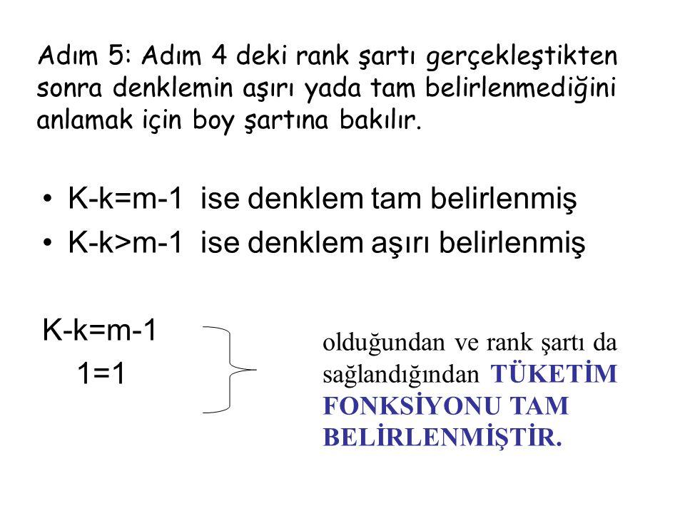 K-k=m-1 ise denklem tam belirlenmiş