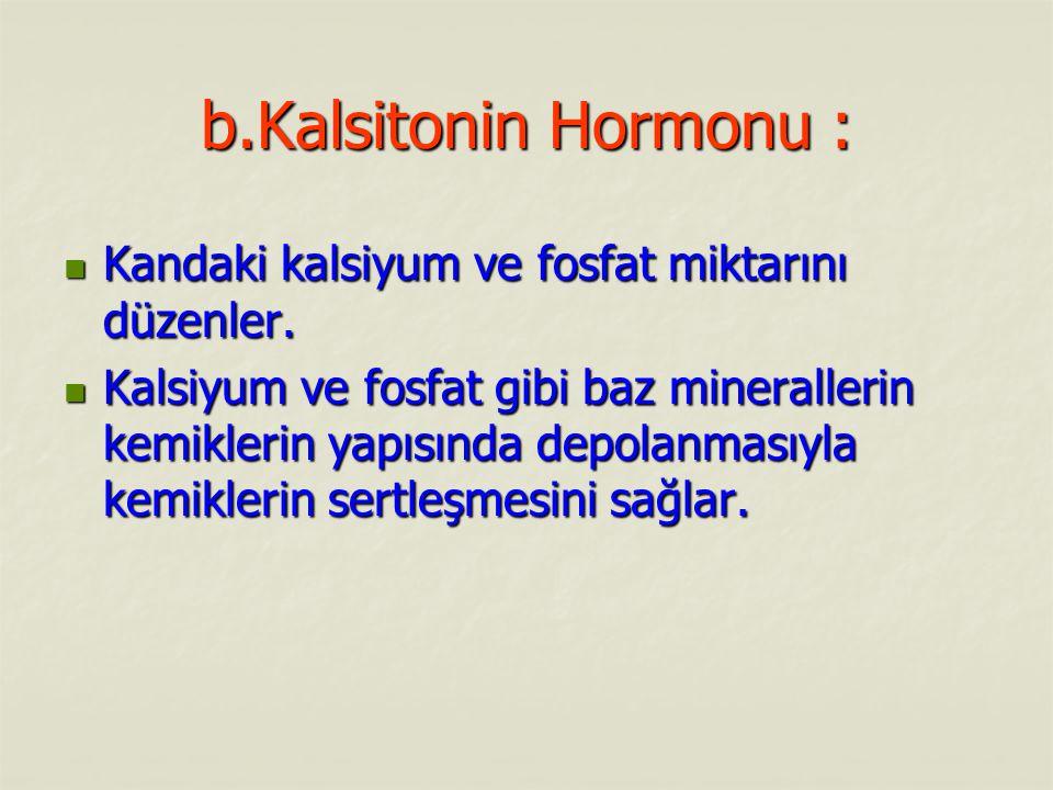 b.Kalsitonin Hormonu : Kandaki kalsiyum ve fosfat miktarını düzenler.