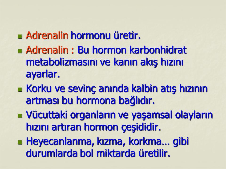 Adrenalin hormonu üretir.