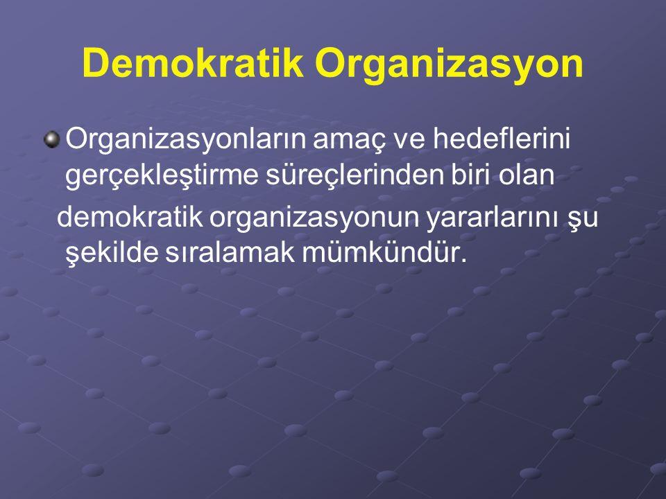 Demokratik Organizasyon